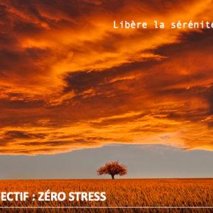 formation en ligne hypnose zero stress